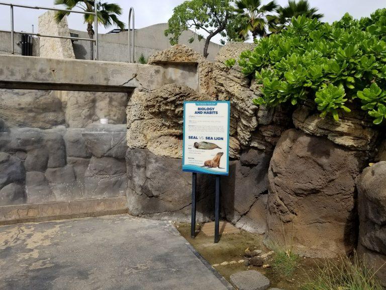 ワイキキ水族館、海獣はお休み