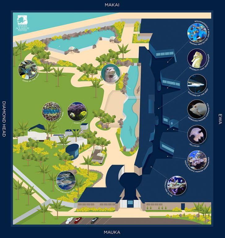 ワイキキ水族館、全体図