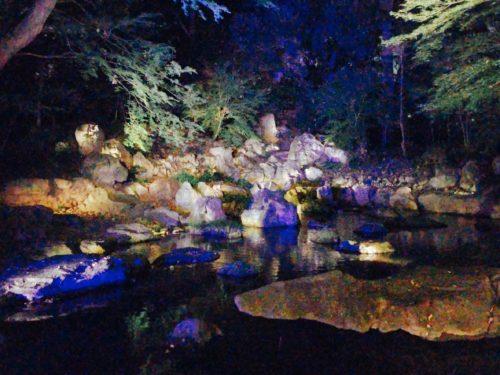 六義園、紅葉。お庭の池につながる小川もライトアップ