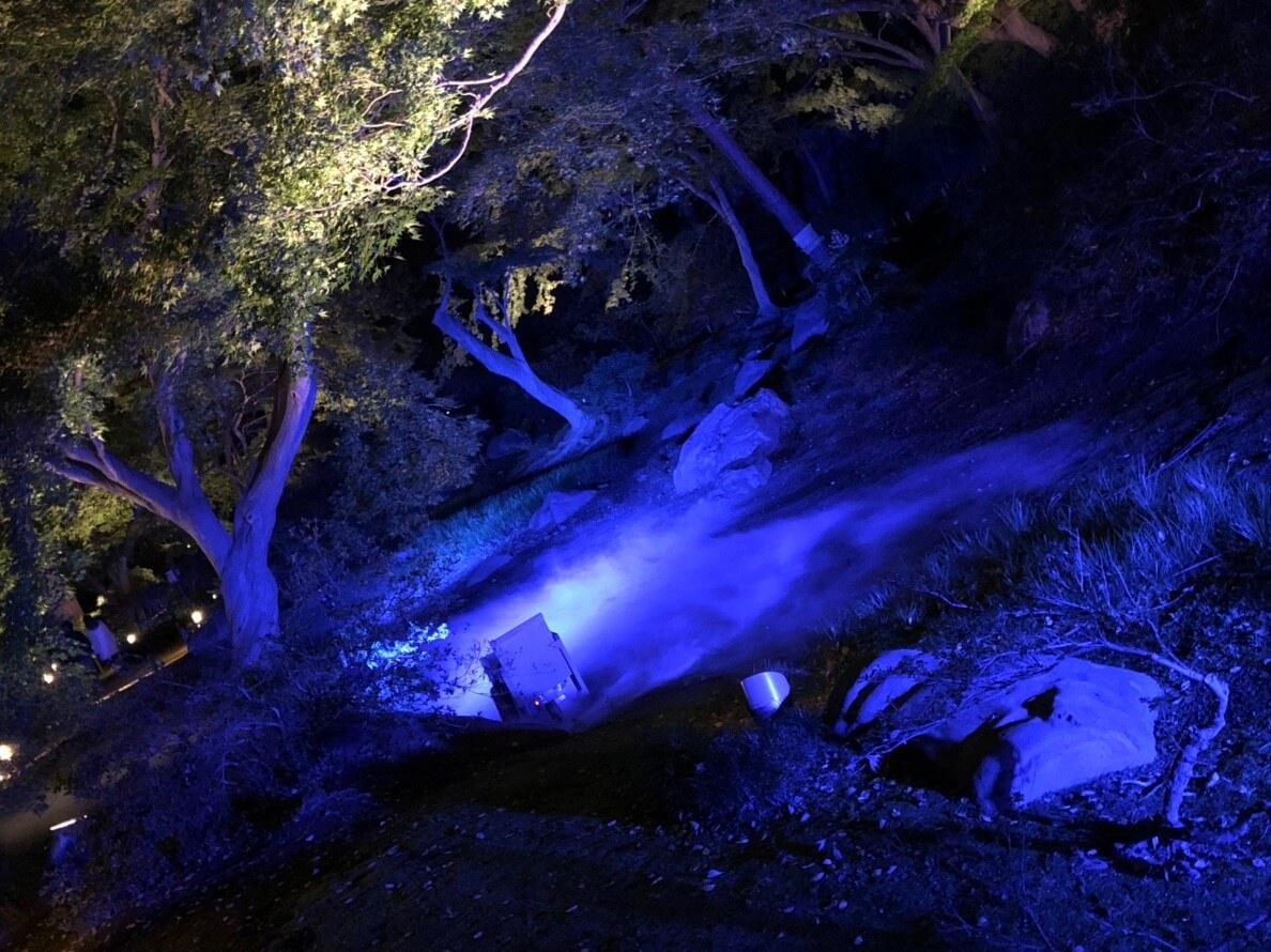 六義園、夜に出現する「水香江(すいこうのえ)」