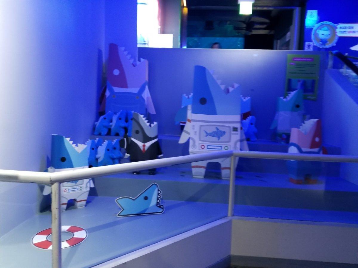 コエックス・アクアリウム:サメ