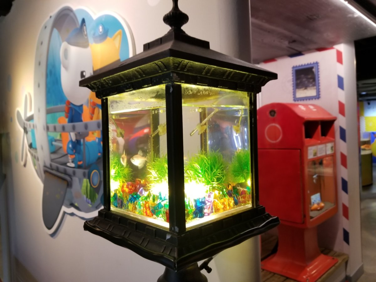 コエックス・アクアリウム:お魚のワンダーランド:街灯風水槽