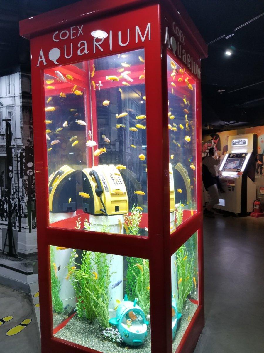 コエックス・アクアリウム:お魚のワンダーランド:電話ボックス風水槽