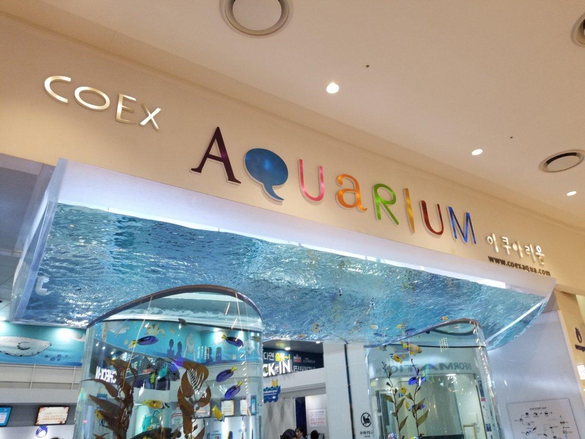 COEX ARARIUM(コエックス・アクアリウム)の入口