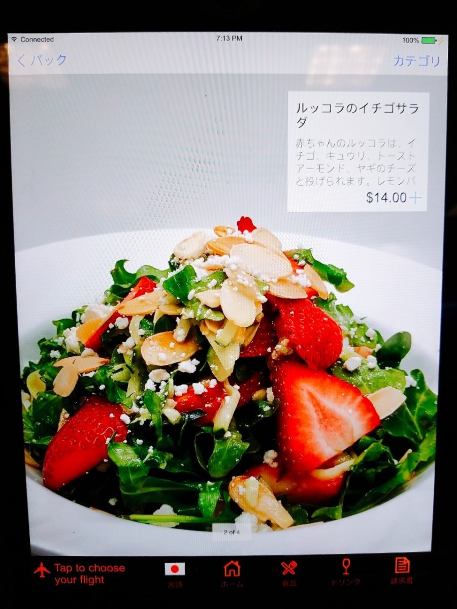 サラダにイチゴが入るセンス真似できぬ:WDW&UORアメリカ新婚旅行