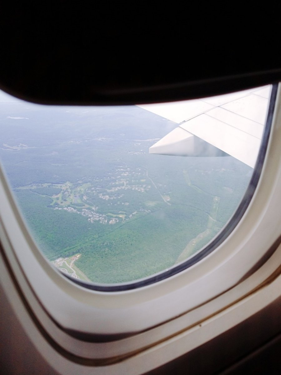窓の外。ニューヨークちょっと前は森!:WDW&UORアメリカ新婚旅行