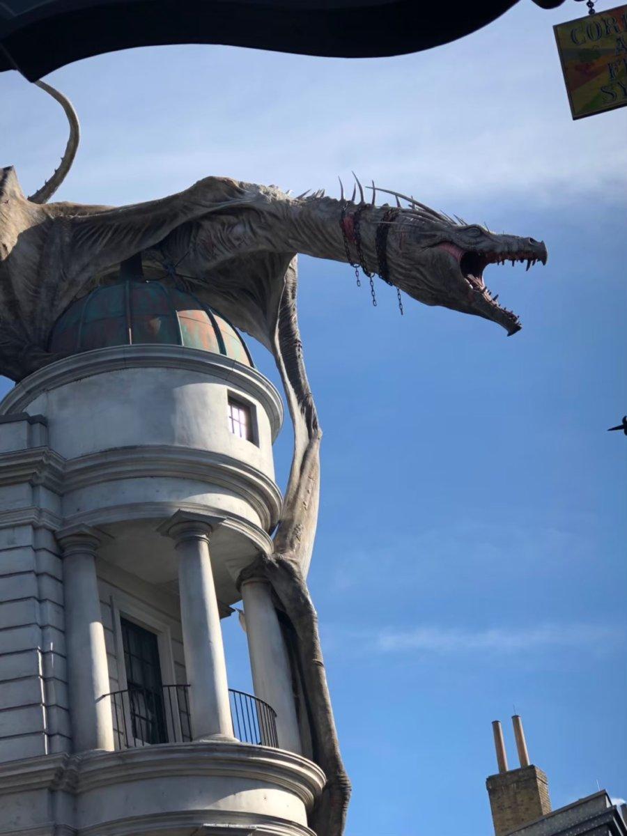 ドラゴン別角度:ウェザーディング・ワールド・オブ・ハリー・ポッター