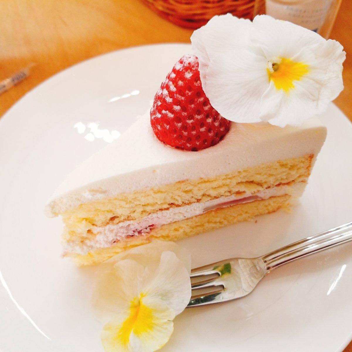 世界らん展2020~KEY COFFEE~tea time ケーキ★