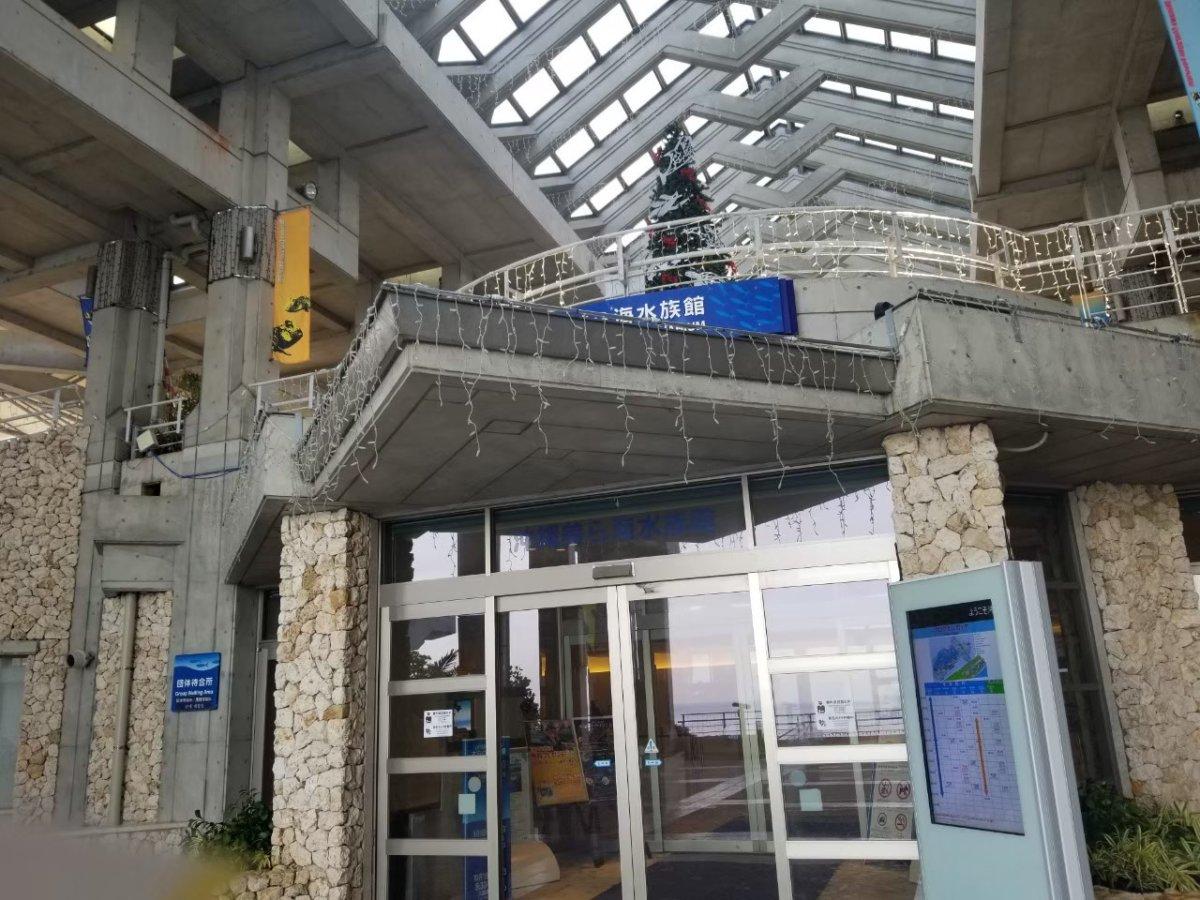 美ら海水族館ー朝一の入り口