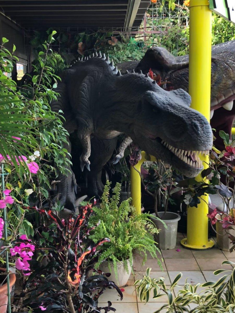 入り口からどどんといらっしゃるダイナソー:DINO恐竜PARK やんばる亜熱帯の森