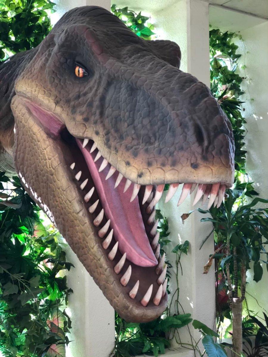 ガォーなダイナソー:DINO恐竜PARK やんばる亜熱帯の森