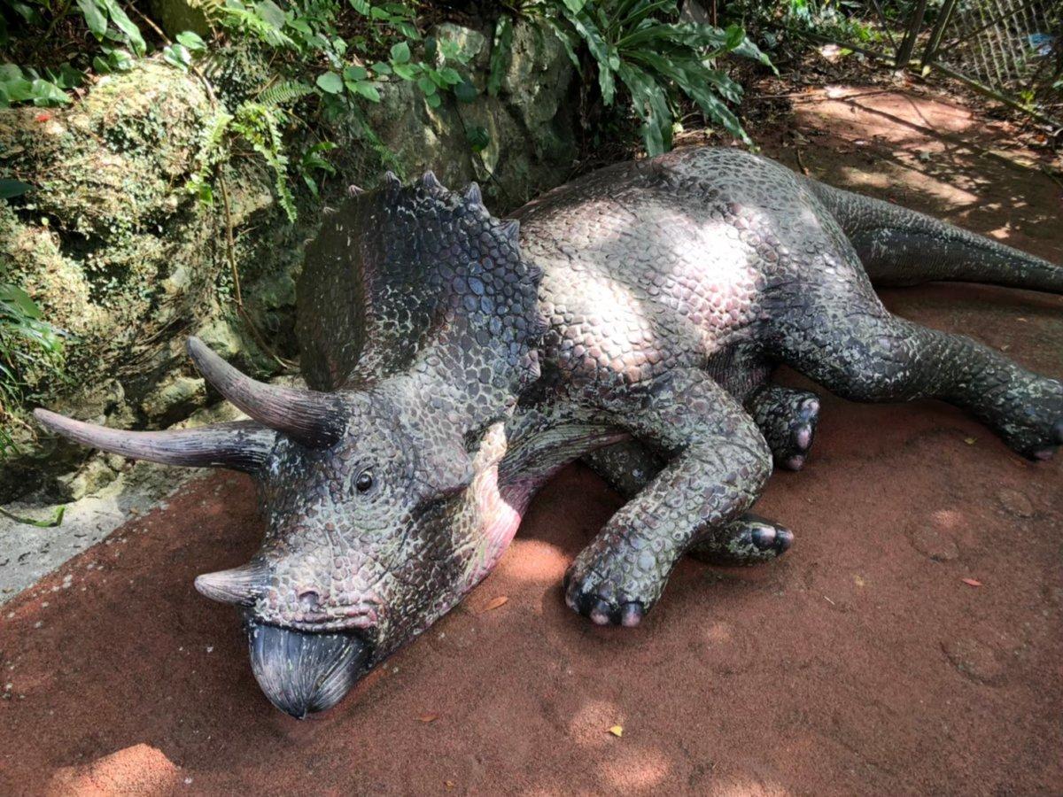 寝ているトリケラトプス:DINO恐竜PARK やんばる亜熱帯の森