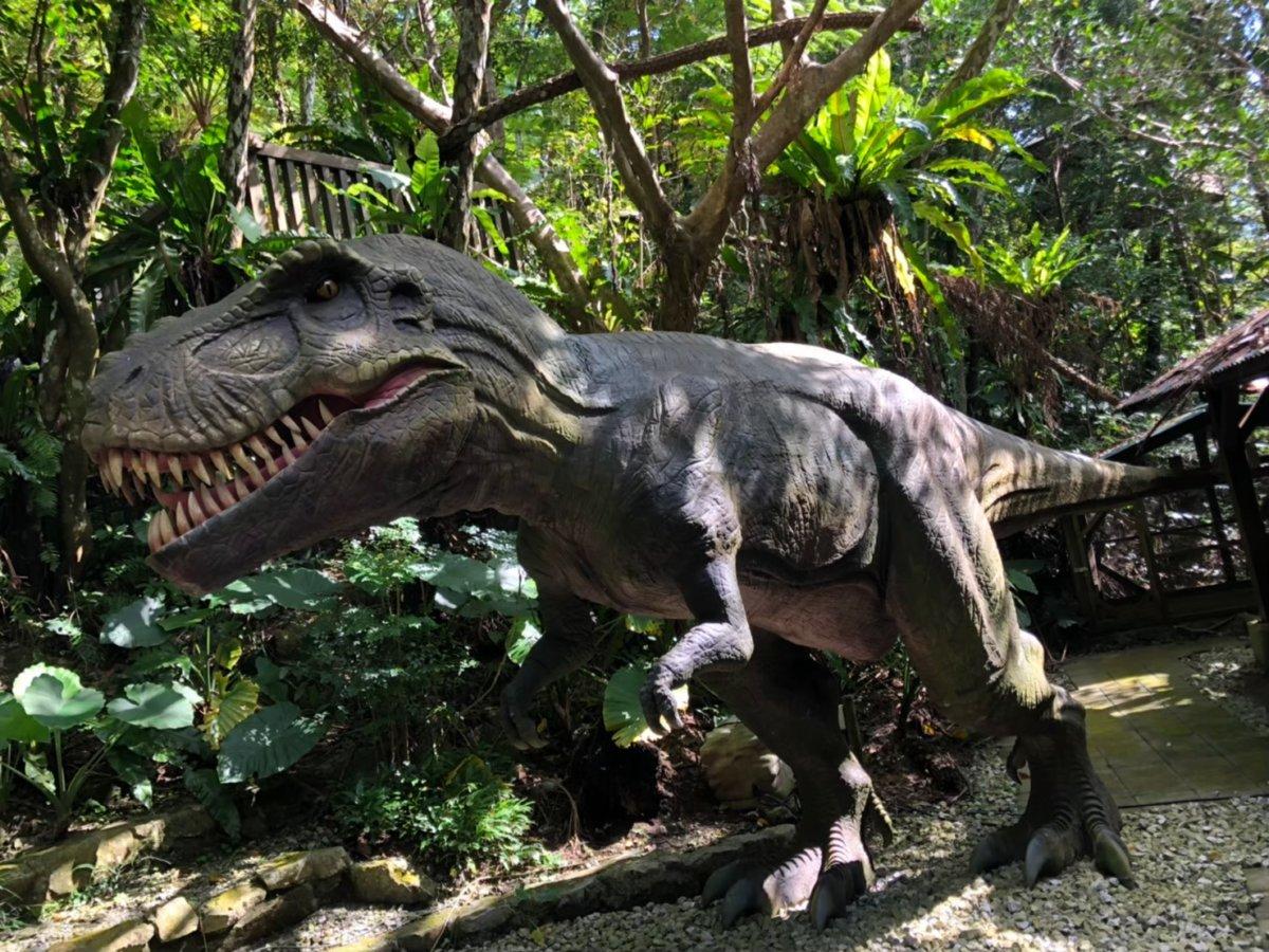 肉食ダイナソー:DINO恐竜PARK やんばる亜熱帯の森