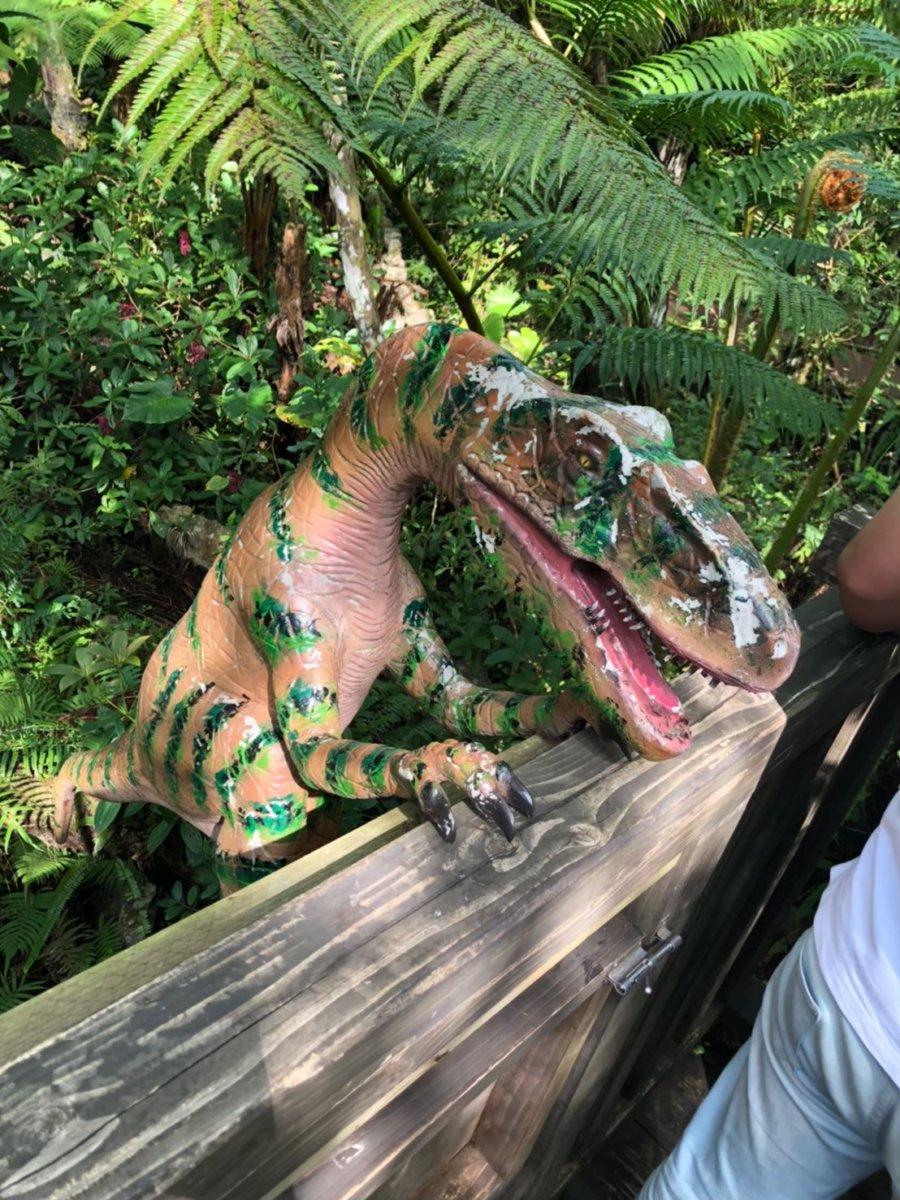 ダイナソー:DINO恐竜PARK やんばる亜熱帯の森