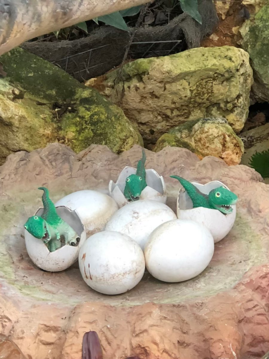 か、かわいい…!孵化したばかりの子ダイナソー:ダイナソーアドベンチャーツアー:ナゴパイナップルパーク