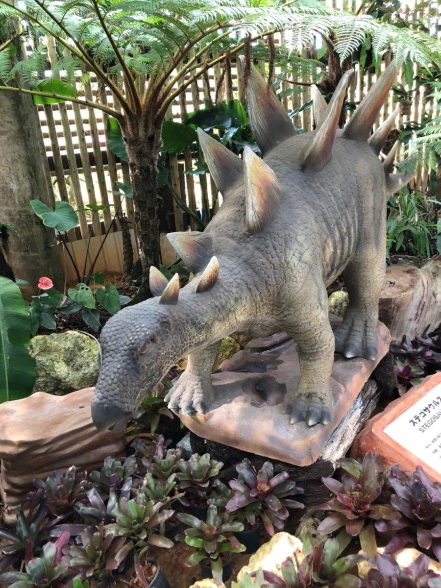 ステゴザウルス:ダイナソーアドベンチャーツアー:ナゴパイナップルパーク