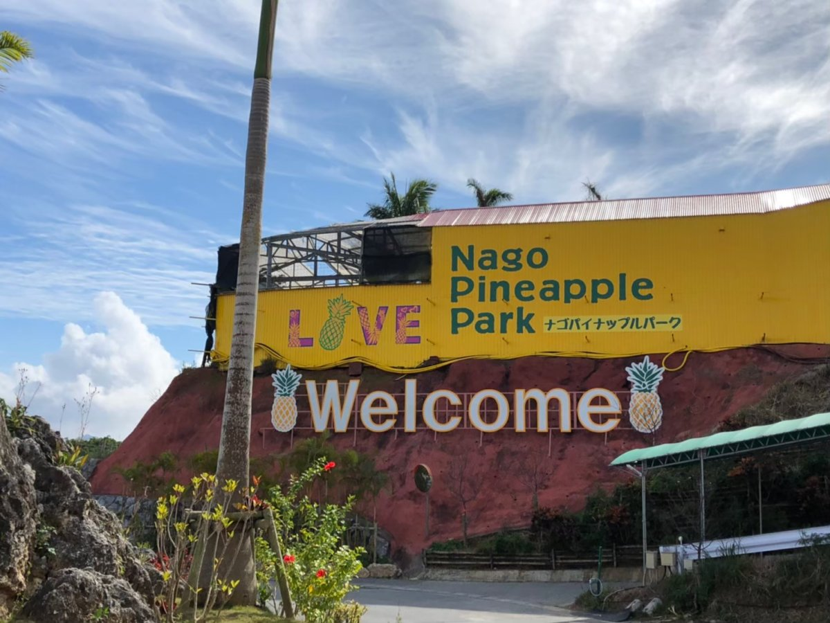 LIVE:ナゴパイナップルパーク