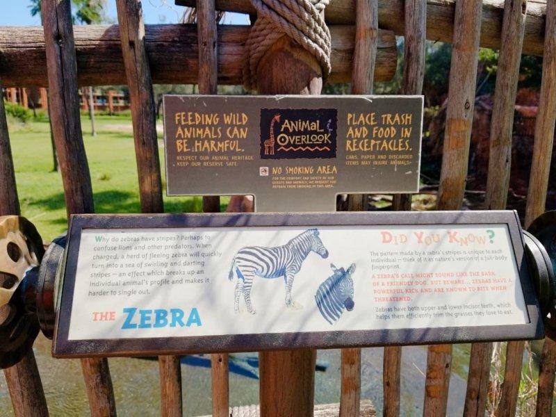 アニマルキングダムロッジ:動物の説明