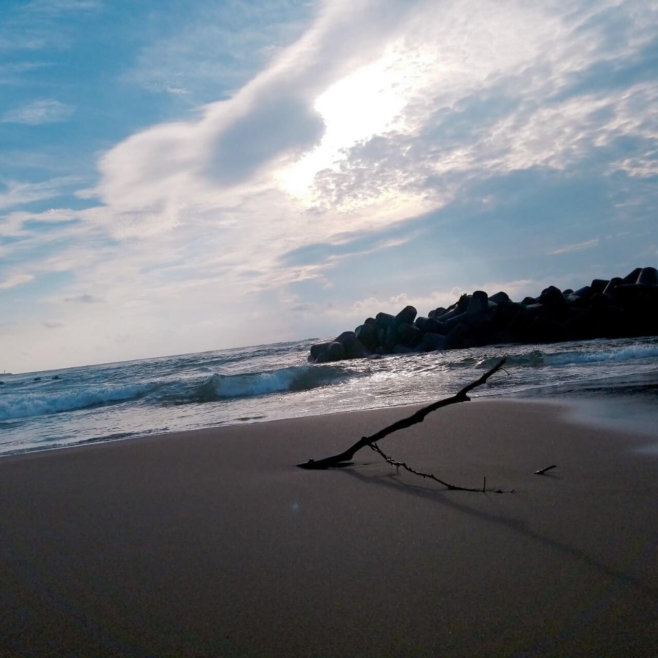 游水亭いさごや:目の前の日本海
