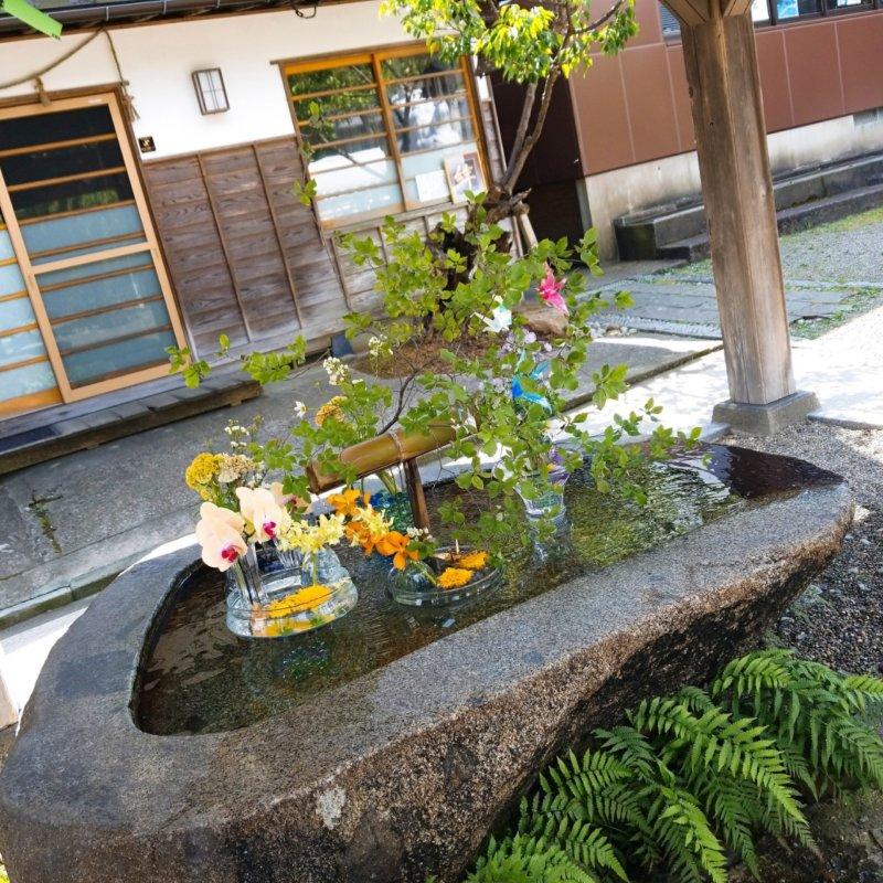 庄内神社:花手水