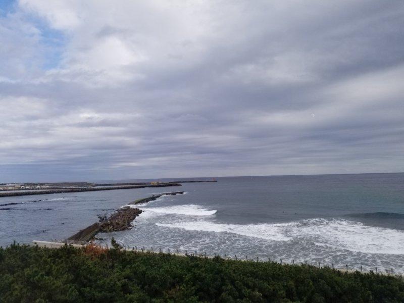 太平洋が見える水族館